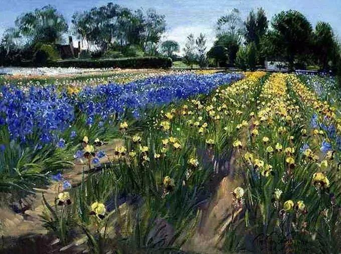 太美了!缤纷斑斓的英伦风情花园,画家蒂莫西·伊斯顿的风景画美到迷了眼!插图35
