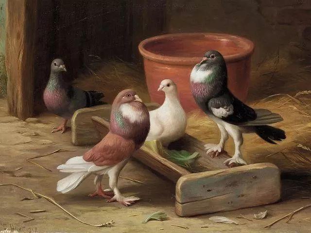 院子里的家禽,英国画家埃德加·亨特插图7
