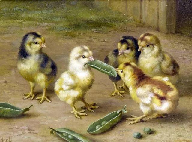 院子里的家禽,英国画家埃德加·亨特插图27