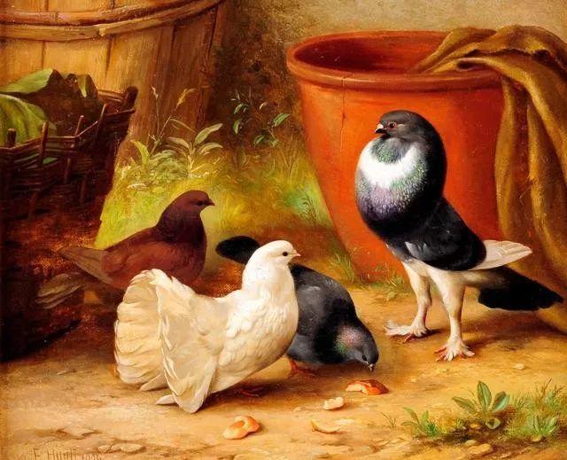 院子里的家禽,英国画家埃德加·亨特插图43