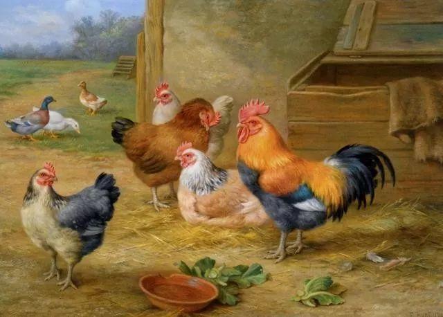 院子里的家禽,英国画家埃德加·亨特插图45