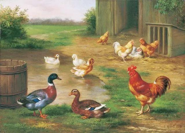 院子里的家禽,英国画家埃德加·亨特插图47