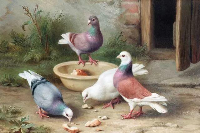 院子里的家禽,英国画家埃德加·亨特插图69