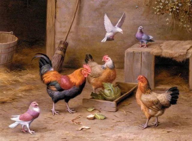 院子里的家禽,英国画家埃德加·亨特插图93
