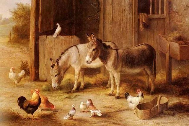 院子里的家禽,英国画家埃德加·亨特插图99