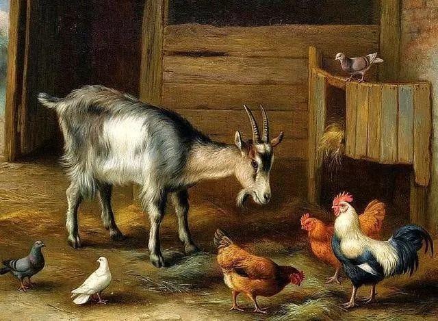 院子里的家禽,英国画家埃德加·亨特插图113