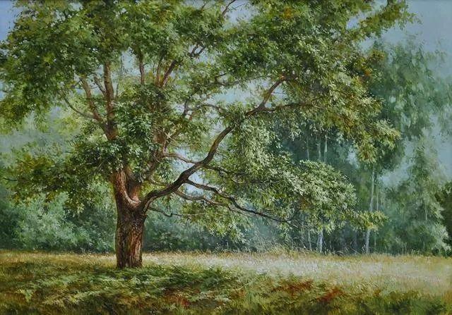 风景篇,俄罗斯画家Alexei Anikin插图37