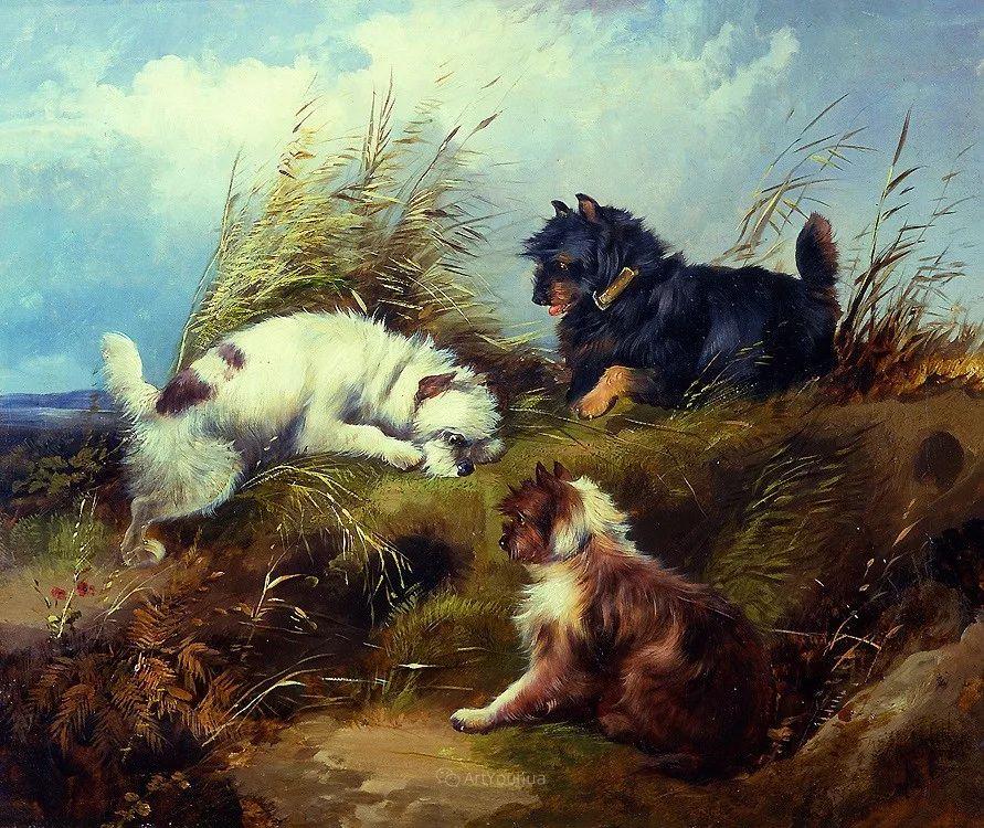 热爱动物,专长画家犬油画,英国画家乔治·阿姆菲尔德插图15