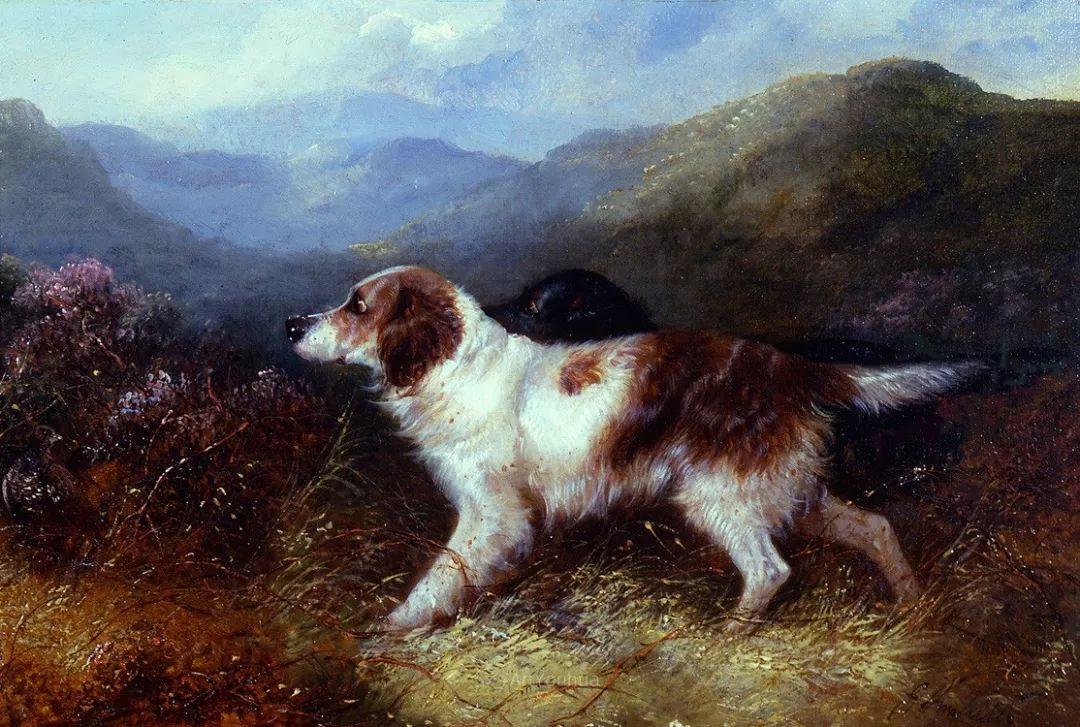 热爱动物,专长画家犬油画,英国画家乔治·阿姆菲尔德插图17