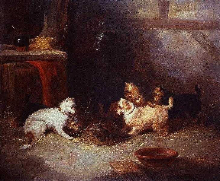 热爱动物,专长画家犬油画,英国画家乔治·阿姆菲尔德插图39