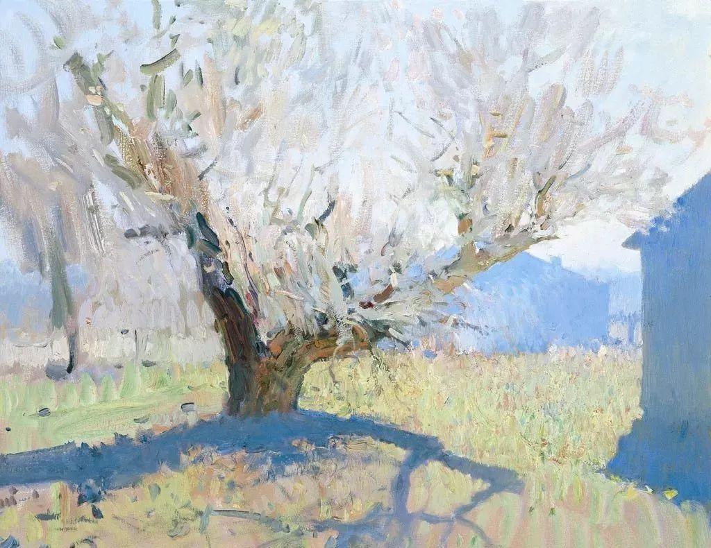 素雅的色调,俄罗斯油画家Bato Dugarzhapov插图12