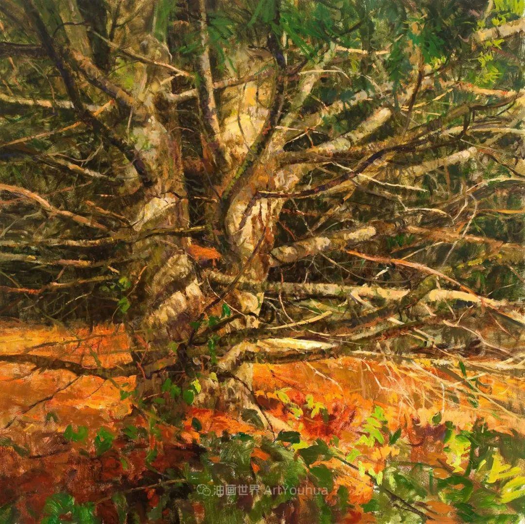 他每一幅画中,真正的主题都是光,绝美!插图131