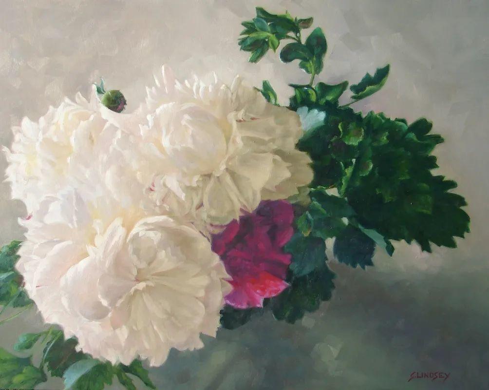不同视角的花卉与静物插图1