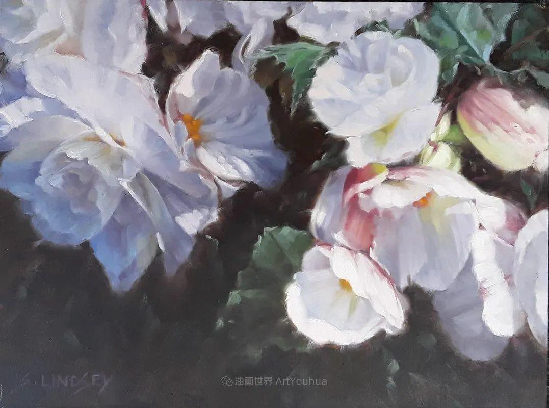 不同视角的花卉与静物插图31