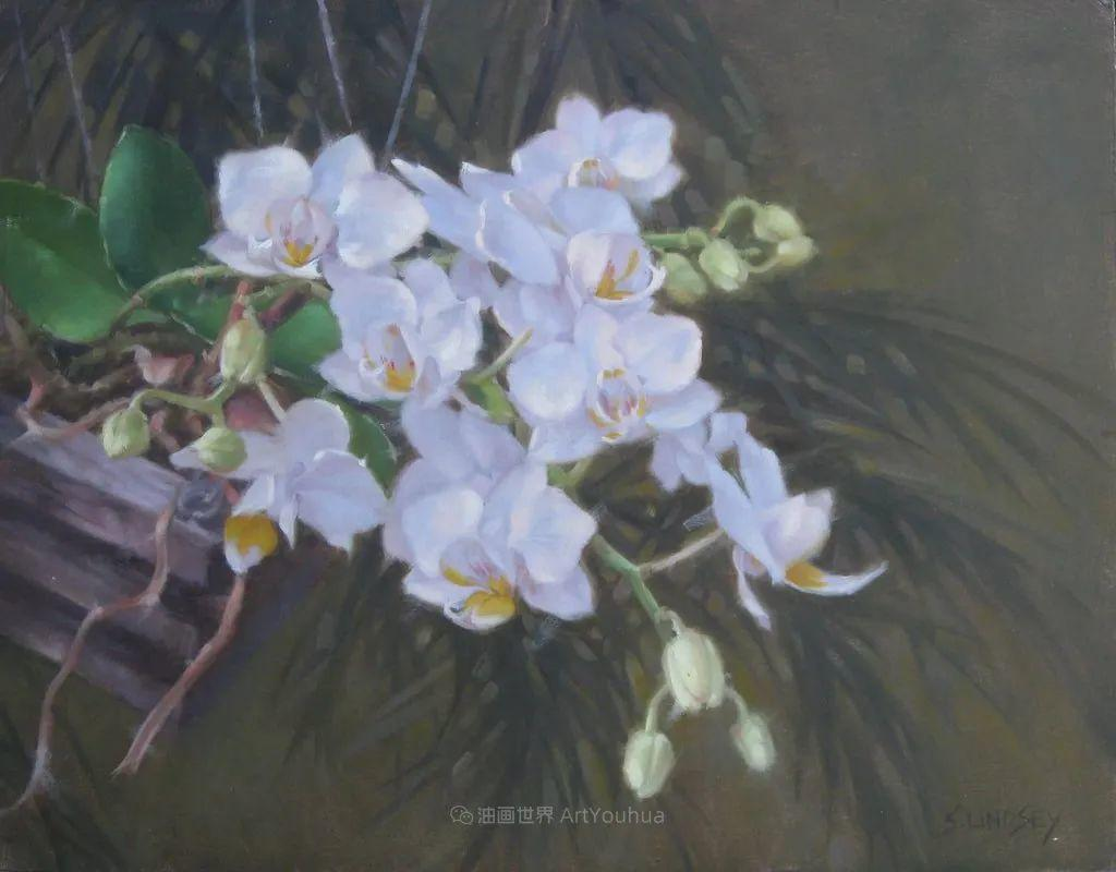 不同视角的花卉与静物插图33