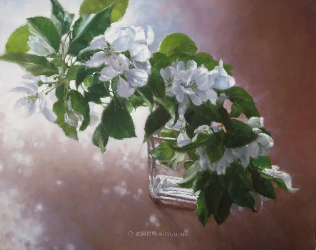 不同视角的花卉与静物插图35