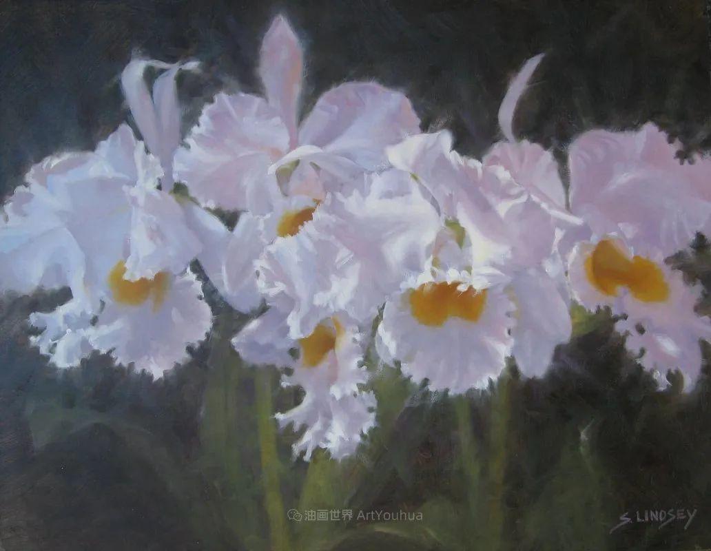 不同视角的花卉与静物插图39