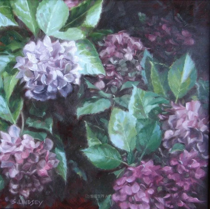 不同视角的花卉与静物插图61