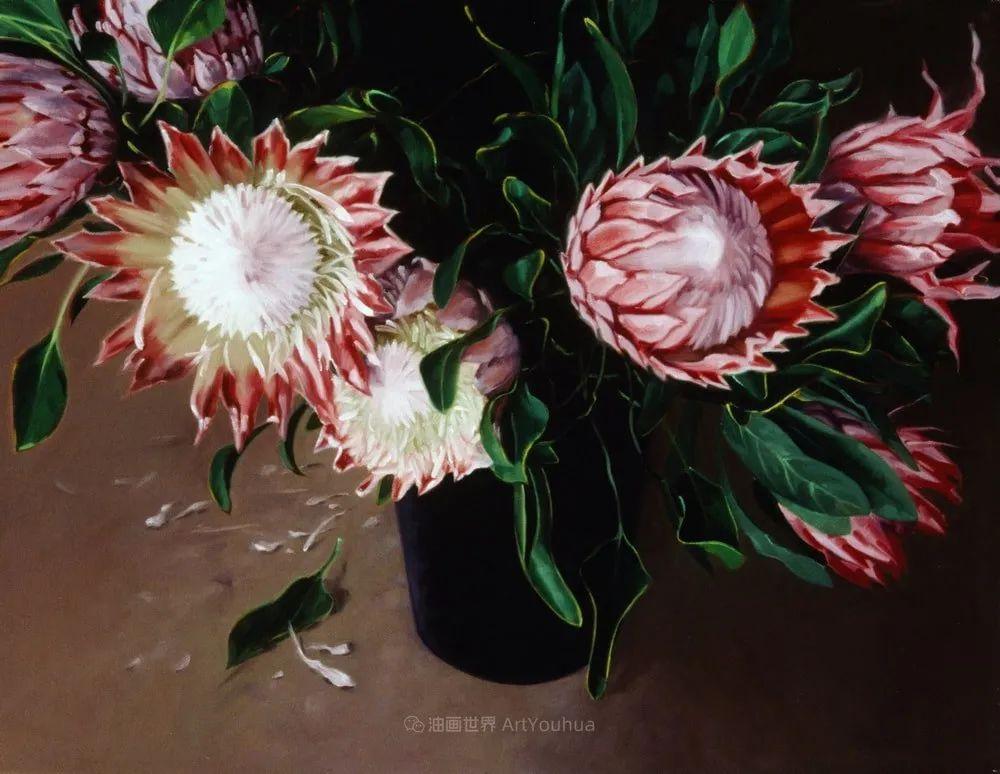 不同视角的花卉与静物插图67