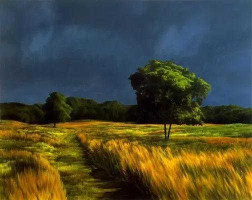 油画风景艺术,暴风雨来袭,美国画家April Gornik的风景画插图17