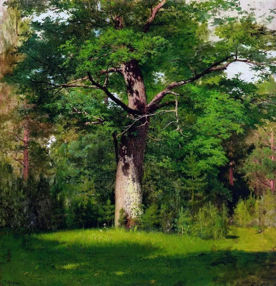 他终身未婚,沉迷在大自然的美中!风景精选202幅插图64