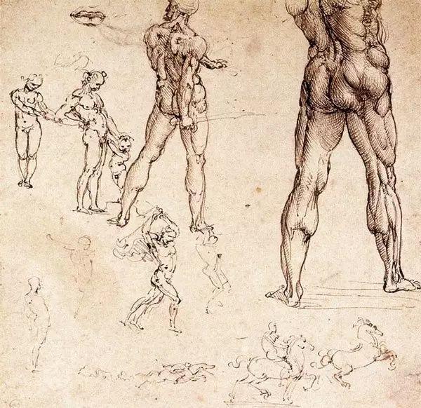 达芬奇的珍贵手稿,你都见过吗?插图77