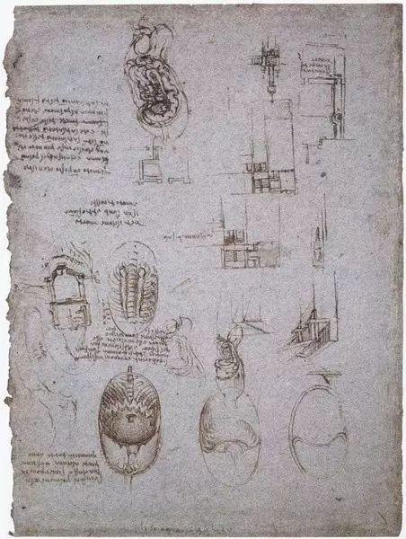 达芬奇的珍贵手稿,你都见过吗?插图91