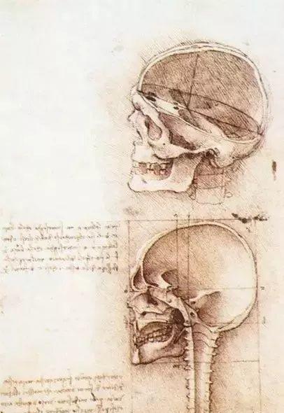 达芬奇的珍贵手稿,你都见过吗?插图95