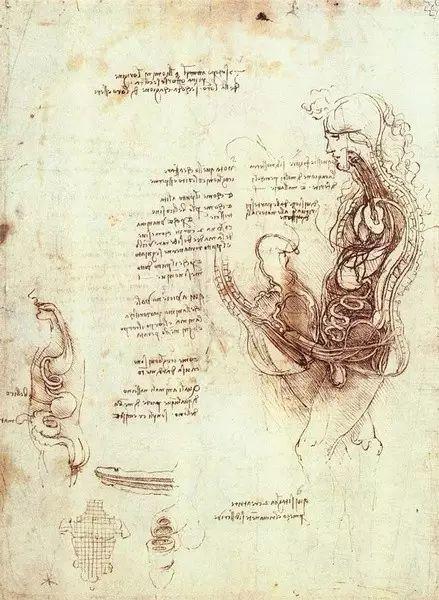 达芬奇的珍贵手稿,你都见过吗?插图103