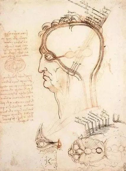 达芬奇的珍贵手稿,你都见过吗?插图105