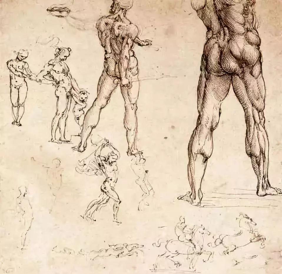达芬奇的珍贵手稿,你都见过吗?插图145