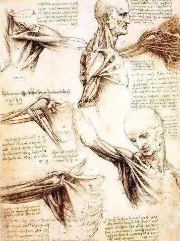 达芬奇的珍贵手稿,你都见过吗?插图161