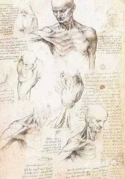 达芬奇的珍贵手稿,你都见过吗?插图169