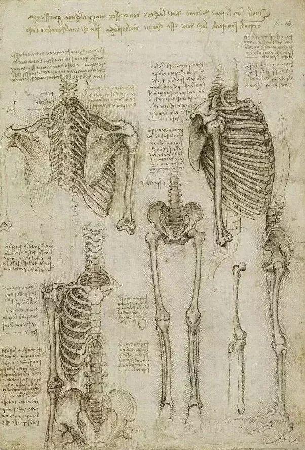 达芬奇的珍贵手稿,你都见过吗?插图175