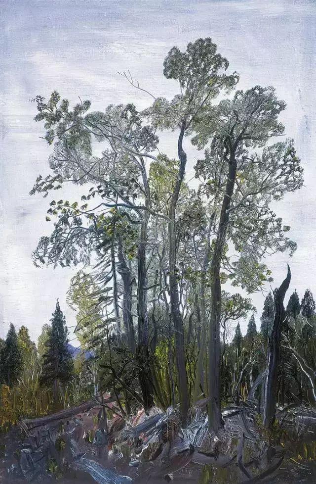 风景油画丨著名艺术家赵开坤的写意风景油画插图35