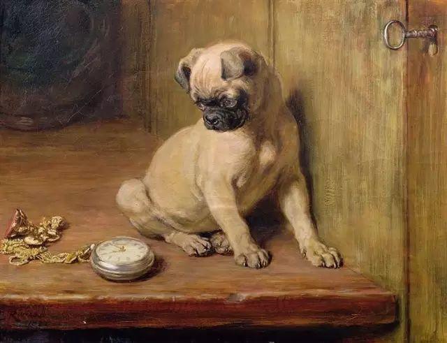 他画的狗狗,比忠犬八公更平易感人插图1