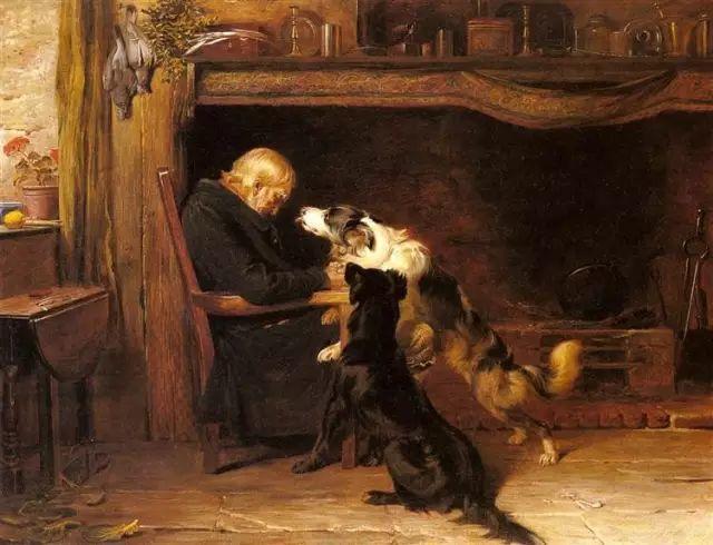他画的狗狗,比忠犬八公更平易感人插图11