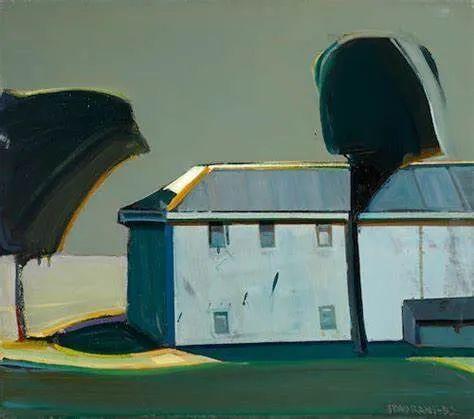 浓烈的色彩与极简的构图   莱蒙兹·斯塔普兰斯油画作品插图93