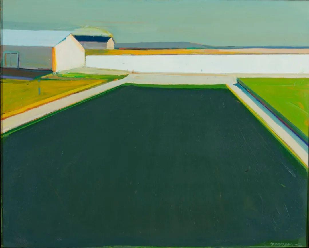 浓烈的色彩与极简的构图   莱蒙兹·斯塔普兰斯油画作品插图129