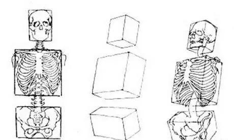 风景油画丨画了40年素描的于小冬告诉你,一定学好人体素描结构插图7