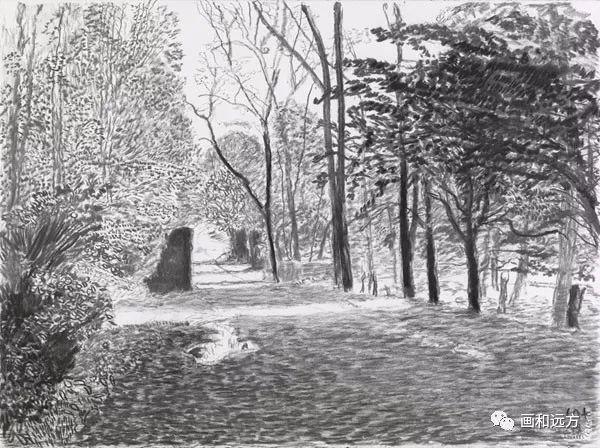回归素描的美感——大卫·霍克尼素描风景作品插图11