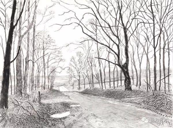 回归素描的美感——大卫·霍克尼素描风景作品插图17