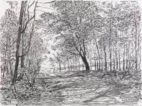 回归素描的美感——大卫·霍克尼素描风景作品插图21