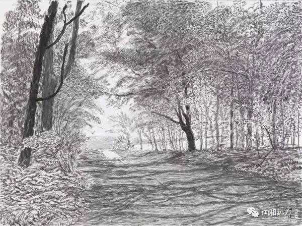 回归素描的美感——大卫·霍克尼素描风景作品插图23