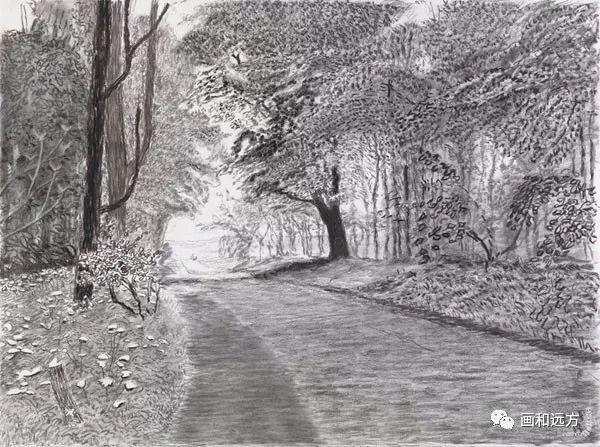 回归素描的美感——大卫·霍克尼素描风景作品插图25