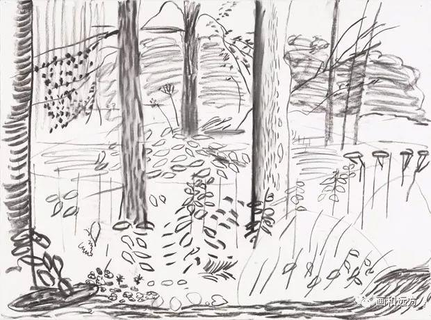 回归素描的美感——大卫·霍克尼素描风景作品插图27