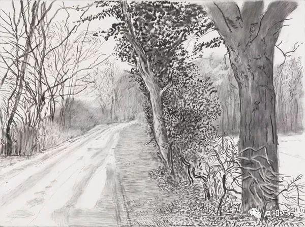 回归素描的美感——大卫·霍克尼素描风景作品插图29