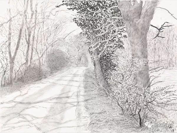 回归素描的美感——大卫·霍克尼素描风景作品插图31