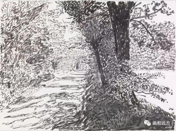 回归素描的美感——大卫·霍克尼素描风景作品插图35