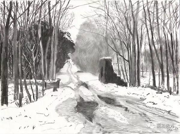回归素描的美感——大卫·霍克尼素描风景作品插图37